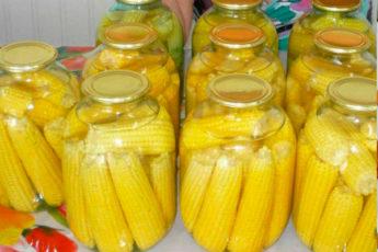 Вкуснейшaя маринованная кукуруза в початках на зиму